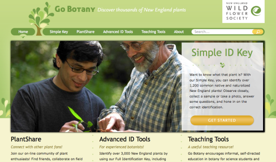 Screen shot of the Go Botany website
