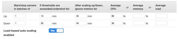 load-based-instances