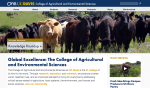 UC Davis College of Agricultural and Engineering Sciences