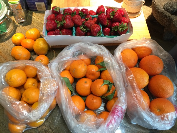 Citrus and strawberries from the Hollywood Farmers' Market